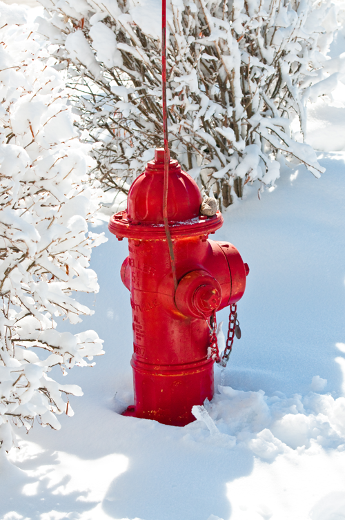 Hydrant With Flag